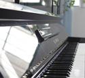学钢琴初期应注意的问题 -