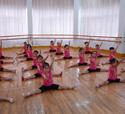 舞蹈教学理论知识 - 舞蹈